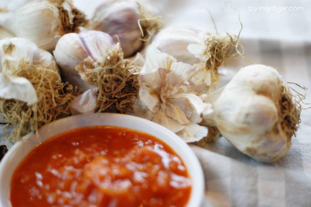 Marillen-Tomaten Ketchup mit ganz vielen Gewürzen und Knoblauch
