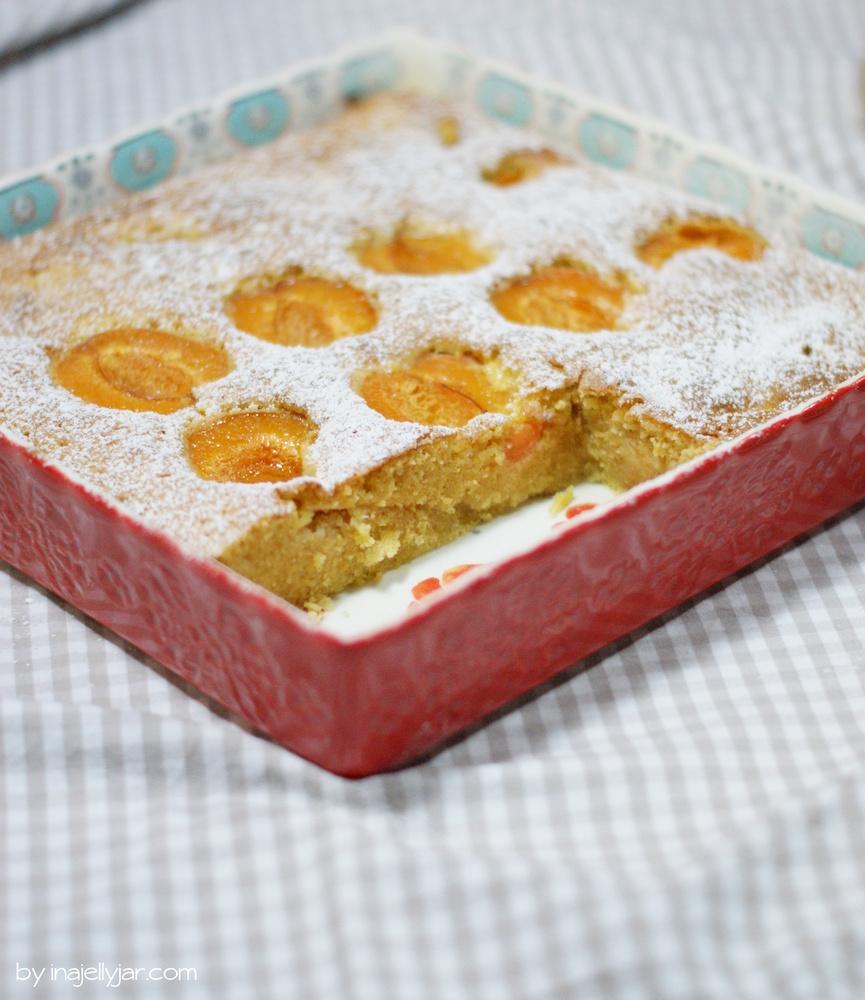 saftiger Vollkorn-Marillenkuchen