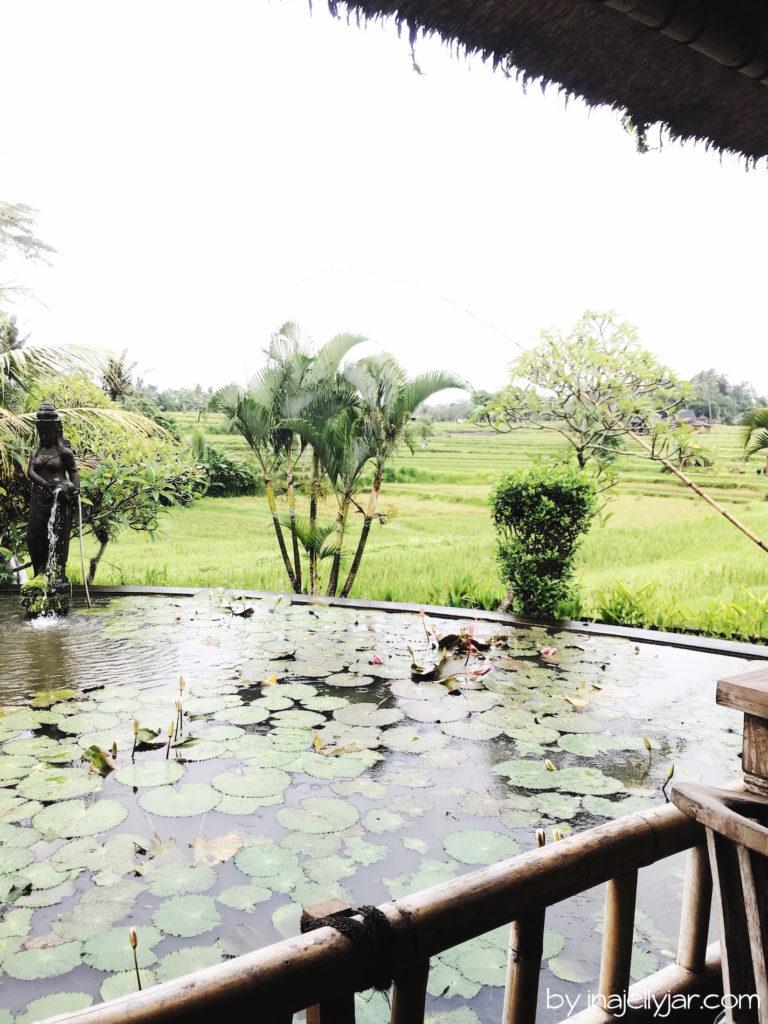 Fischteich im Karsa Kafe, Ubud in Bali